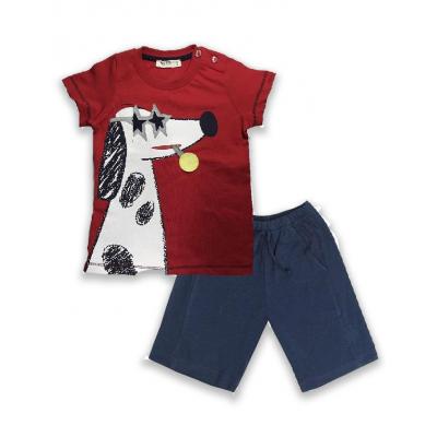 Комплект (шорты и футболка) для мальчика 105
