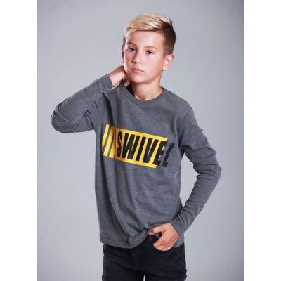 Свитшот для мальчика 2828 серый ТМ Marions