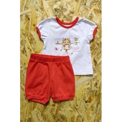 Комплект (футболка и шорты) для девочки 201-04 оранжевый