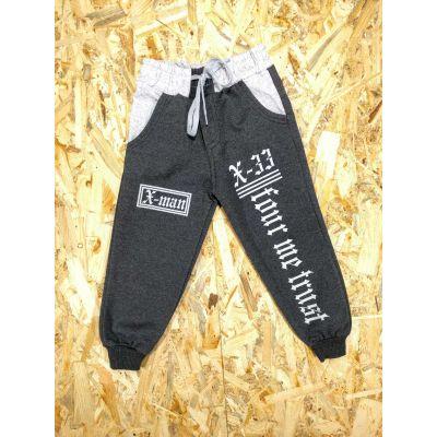 Спортивные брюки Х-33 темно серые