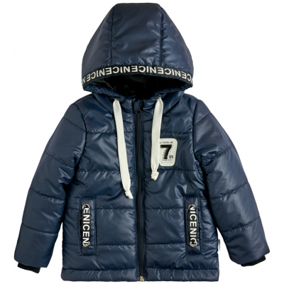 Куртка демисезонная для мальчика 105558-36 синяя