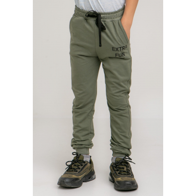 Спортивные штаны Твиш 5707 оливковые
