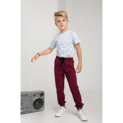 Спортивные штаны Крейп 5628 сливовые