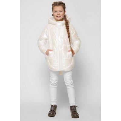 Куртка DT-8299-24 радужная