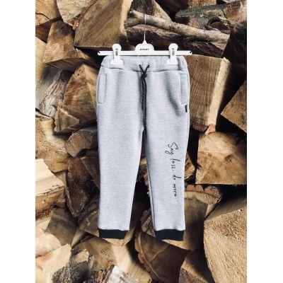 Спортивные брюки с начесом 0380 серые