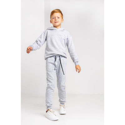 Спортивные штаны Аристоль 6060 байка серый меланж