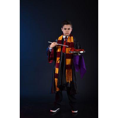 Карнавальный костюм Гарри Поттер с гриффиндора
