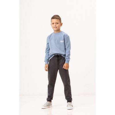Спортивные штаны Тиор 7993