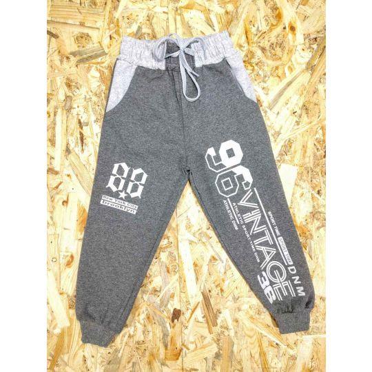 Спортивные брюки 96VINTAGE36 светло серые