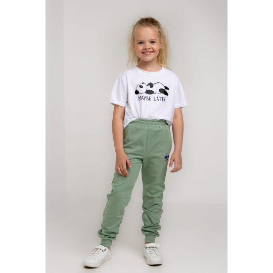 Спортивные штаны Дарли 5737 фисташковые