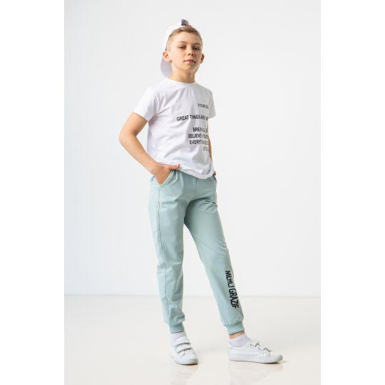 Спортивные штаны Лунар 7226 зеленый чай